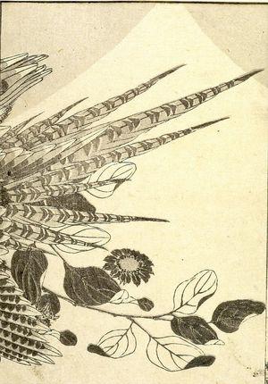 Katsushika Hokusai: Fuji in a Dream (Yume no Fuji): Half of detatched page from One Hundred Views of Mount Fuji (Fugaku hyakkei) Vol. 2, Edo period, 1835 (Tempô 6) - Harvard Art Museum