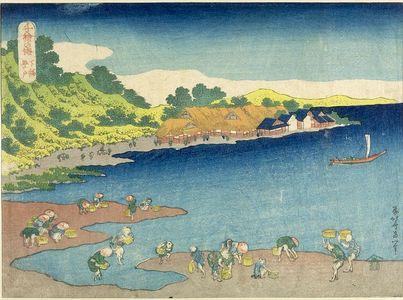 Katsushika Hokusai: CHIE NO MINE, FRUIT OF THE SEA - Harvard Art Museum