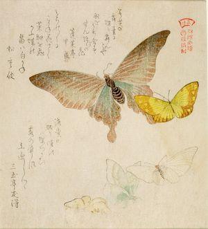 窪俊満: One Large and Four Small Butterflies with text beginning