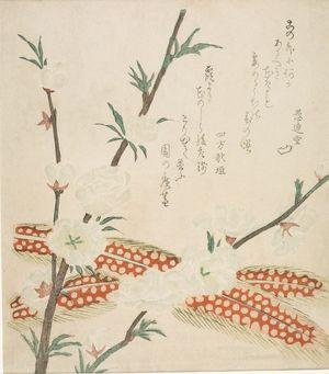 窪俊満: Peach Blossoms and Pheasant Feathers, with poems by Yomo no Utagaki and Kurendo, Edo period, circa early 19th century - ハーバード大学