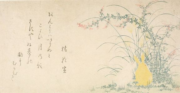 窪俊満: Rabbits in Bush Clover (Hagi) and Pampas Grass (Susuki), with poem by Tachibana Kajitsu, Edo period, 1807 (Year of the Rabbit) - ハーバード大学