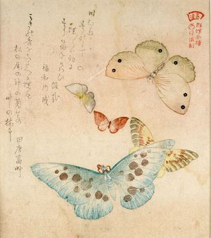 窪俊満: One Large, Two Medium-Sized and Two Small Butterflies with text beginning