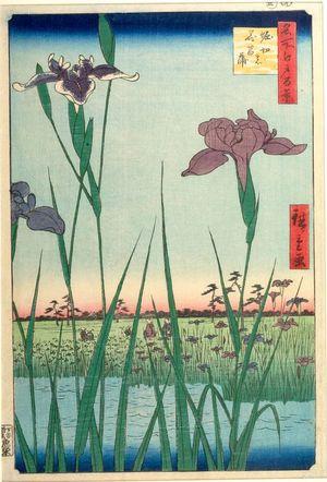 Utagawa Hiroshige: Horikiri Iris Garden (Horikiri no hanashôbu), Number 64 from the series One Hundred Famous Views of Edo (Meisho Edo hyakkei), Edo period, dated 1857 (5th month) - Harvard Art Museum
