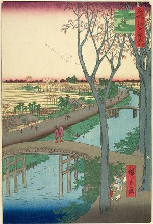 Utagawa Hiroshige: Koume Embankment (Koumezutsumi), Number 104 from the series One Hundred Famous Views of Edo (Meisho Edo hyakkei), Edo period, dated 1857 (2nd month) - Harvard Art Museum