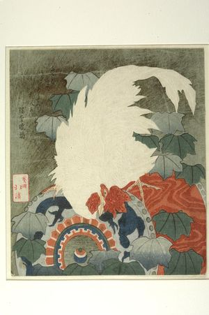 Totoya Hokkei: WHITE COCK STANDING ON A DRUM - Harvard Art Museum