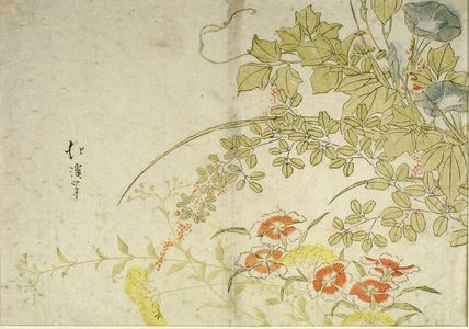 Totoya Hokkei: Autumn Flowers - Harvard Art Museum