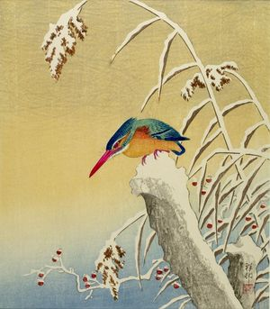 小原古邨: Kingfisher on Snowy Stump, Shôwa period, 1935 - ハーバード大学