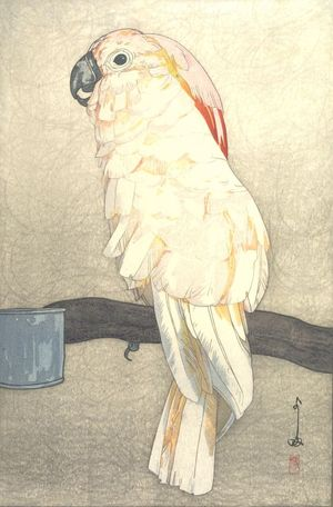 Yoshida Hiroshi: Salmon-Crested Cockatoo (ôbatan ômu), from the series At the Zoological Garden (Dobutsuen), Taishô period, dated 1926 - Harvard Art Museum