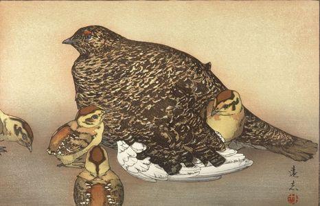 吉田遠志: Snow Grouse (Raichô), Shôwa period, 1930 - ハーバード大学