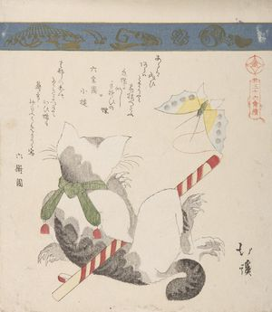 Totoya Hokkei: Cat and Butterfly, from the series A Collection of Thirty-Six Birds and Animals (Sanjûroku tori zukushi), Edo period, circa 1825 - Harvard Art Museum