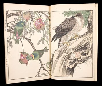 Unknown: Flowers and Birds of Keinen (Keinen kacho gafu) - Harvard Art Museum