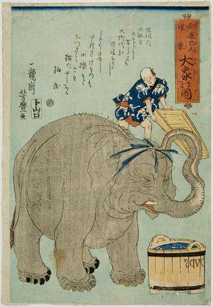 Utagawa Yoshitoyo: Great Elephant (Daizô), published by Yamaguchiya Tôbei, Late Edo period, second month of 1863 - Harvard Art Museum