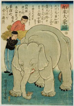歌川芳豊: Newly Imported Great Elephant (Hakurai daizô no zu), Late Edo period, second month of 1863 - ハーバード大学