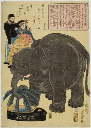 歌川芳豊: Great Elephant Born in Maruka in Central India (Tenjiku Maruka koku no san daizô), published by Kikuichi, Late Edo period, second month of 1863 - ハーバード大学
