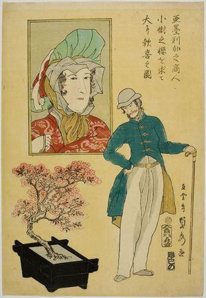 歌川貞秀: American Merchant Admiring Miniature Cherry Tree He Just Acquired, published by Moriya Jihei, Late Edo period, second month of 1861 - ハーバード大学