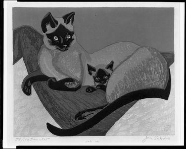 関野準一郎: Cats - ハーバード大学