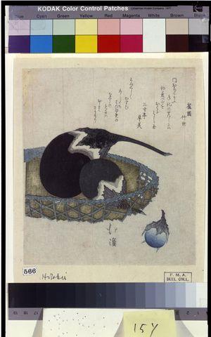 魚屋北渓: Eggplants in Basket, Edo period, early 19th century - ハーバード大学
