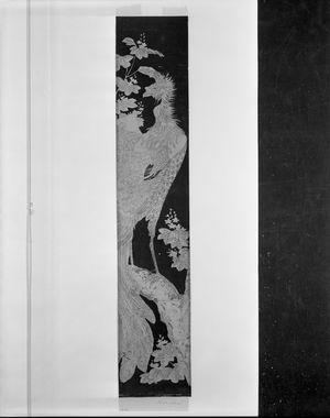 Ishikawa Toyonobu: Phoenix (Hô-ô) and Paulownia, Edo period, circa 1773 - Harvard Art Museum
