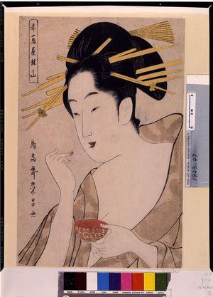 Hosoda Eishô: Courtesan Rinzan of the Akatsutaya, Mid Edo period, circa 1780-1800 - Harvard Art Museum