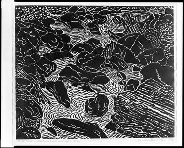 Hiratsuka Un'ichi: Rock Creek in Montrose Park, Washington D.C., Shôwa period, dated 1962 - Harvard Art Museum