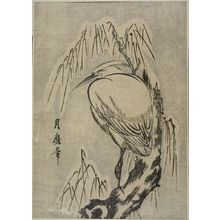 Kitagawa Tsukimaro: HERON IN WILLOW TREE - Harvard Art Museum