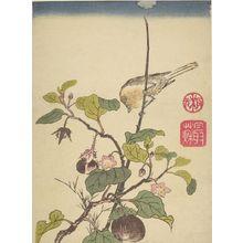 Ippitsusai Buncho: BRAND OF EGGPLANT - Harvard Art Museum