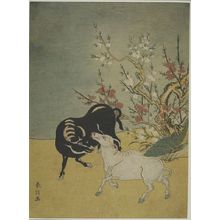 Suzuki Harunobu: Oxen and Plum Trees, Edo period, circa 1765-1770 - Harvard Art Museum