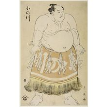 Katsukawa Shun'ei: Wrestler Onogawa - Harvard Art Museum
