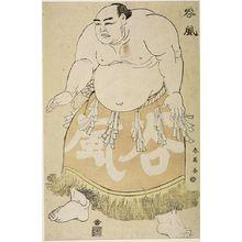 Katsukawa Shun'ei: Wrestler Tanikaze - Harvard Art Museum