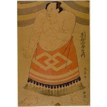 Katsukawa Shuntei: Wrestler Otowazan Minezaemon - Harvard Art Museum