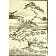 Katsushika Hokusai: Drawing Fuji from Life (Shashin no Fuji): Half of detatched page from One Hundred Views of Mount Fuji (Fugaku hyakkei) Vol. 2, Edo period, 1835 (Tempô 6) - Harvard Art Museum