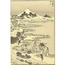 Katsushika Hokusai: Fuji from Senzoku (Senzoku no Fuji): Detatched page from One Hundred Views of Mount Fuji (Fugaku hyakkei) Vol. 3, Edo period, circa 1835-1847 - Harvard Art Museum