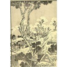Katsushika Hokusai: Fuji from the Sumida River (Sumida no Fuji): Half of detatched page from One Hundred Views of Mount Fuji (Fugaku hyakkei) Vol. 3, Edo period, circa 1835-1847 - Harvard Art Museum