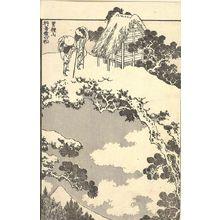 葛飾北斎: Fuji in the Distance from Shimotsuke Province (Yashû enkei no Fuji): Half of detatched page from One Hundred Views of Mount Fuji (Fugaku hyakkei) Vol. 3, Edo period, circa 1835-1847 - ハーバード大学
