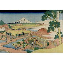 Katsushika Hokusai: Fuji from the Tea Plantation of Katakura in Suruga Province (Sunshû Katakura chaen no Fuji), from the series Thirty-Six Views of Mount Fuji (Fugaku sanjûrokkei), Late Edo period, circa 1829-1833 - Harvard Art Museum