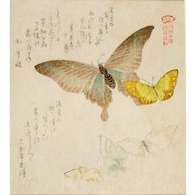 窪俊満: One Large and Four Small Butterflies with text beginning