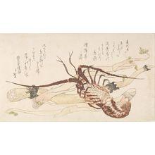 窪俊満: Crawfish (Ebi), Lotus Root (Renkon) and Zingiber Root (Udo), with poems by Hinoki Butei Tsukuru and Shunman, Edo period, circa early 19th century - ハーバード大学