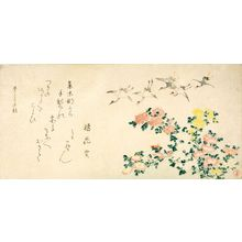 Kubo Shunman: Cranes and Chrysanthemums, with poem by Tachibana Kajitsu, Edo period, dated 1813 (Mizutori no aki / Autumn of Bunka 10) - Harvard Art Museum