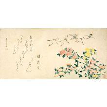窪俊満: Cranes and Chrysanthemums, with poem by Tachibana Kajitsu, Edo period, dated 1813 (Mizutori no aki / Autumn of Bunka 10) - ハーバード大学