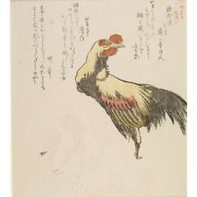 Kubo Shunman: Bird Competition (Tori-awasebara) Rooster and Dog, from the series Chronicles of Kamakura (Kamakura shi), with poems by Kyoben and associates, Edo period, circa 1813 - Harvard Art Museum