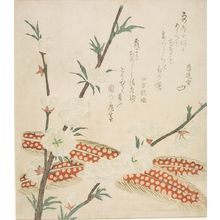 Kubo Shunman: Peach Blossoms and Pheasant Feathers, with poems by Yomo no Utagaki and Kurendo, Edo period, circa early 19th century - Harvard Art Museum