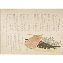 Kubo Shunman: Still Life of Konbu Seaweed(?) and Nandina (Nanten) Wrapped in Bamboo Leaves, with various poems, Edo period, dated 1812 (Bunka 9) - Harvard Art Museum