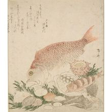 柳々居辰斎: Tai Fish, Squid, and Shells, Late Edo period, circa early 19th century - ハーバード大学
