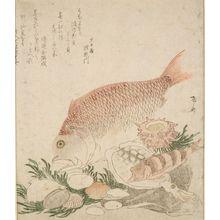 Ryuryukyo Shinsai: Tai Fish, Squid, and Shells, Late Edo period, circa early 19th century - Harvard Art Museum