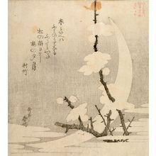 Yashima Gakutei: WHITE CRESENT MOON AND PLUM BLOSSOMS - Harvard Art Museum