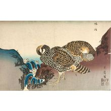 Kuwagata Keisai: TWO PHEASANTS BY A STREAM - Harvard Art Museum