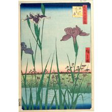 Utagawa Hiroshige: Horikiri Iris Garden (Horikiri no hanashôbu), Number 64 from the series One Hundred Famous Views of Edo (Meisho Edo hyakkei), Edo period, dated 1857 (5th month) - Harvard Art Museum