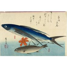 Utagawa Hiroshige: Flying Fish (Tobiuo), White Croaker (Ishimochi) and Lily (Yuri), from the series A Shoal of Fishes (Uo-zukushi) - Harvard Art Museum