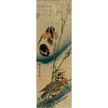 Unknown: JAPANESE PRINTS - Harvard Art Museum