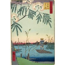 Utagawa Hiroshige: Ayase River and Kanegafuchi (Ayasegawa Kanegafuchi), Number 63 from the series One Hundred Famous Views of Edo (Meisho Edo hyakkei), Edo period, dated 1857 (7th month) - Harvard Art Museum